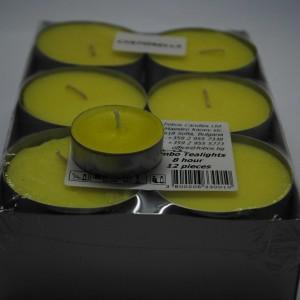 Citronella-11